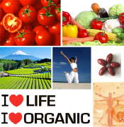 I LOVE ORGANIC Health food manufacturing produced with organic lycopene, Italian organic health food products made in Italy, hearth health care and cardiovascular disease prevention products from an Italian manufacturer, dietary supplement food organic suppliers and health food pills to USA, Canada, Middle East and Europe health care European dietary food wholesale distributors. Supplement food manufacturer with organic lycopene for health care business to business, organic lycopene for health care, skin care, anti aging for wholesale business and industrial applications